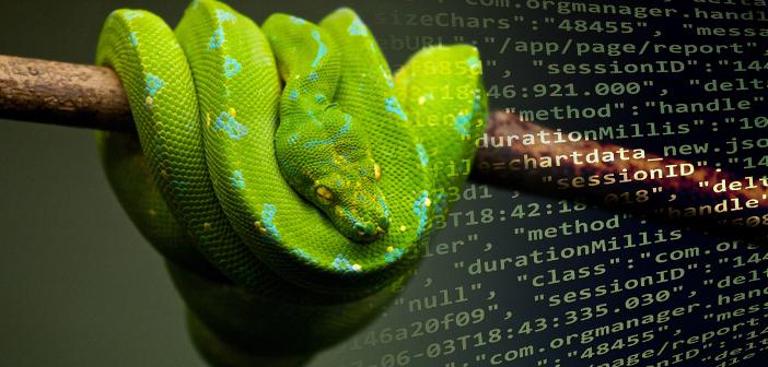 Python mit JSON