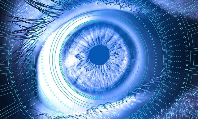 Eye. Surveillance.