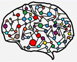 Neuronale Netze, Neurologie